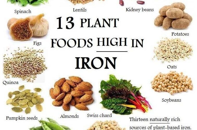 plantfoodshighiniron