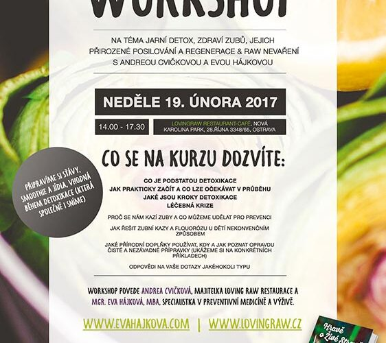 workshop 20170219